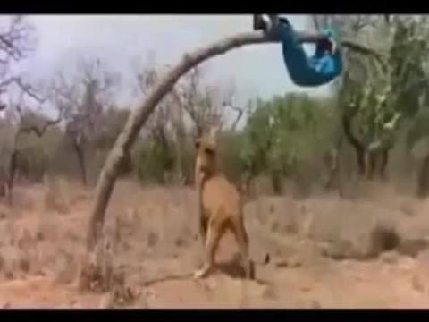 هتتفشخ ضحك وربنا.. حقيقى الجري الجدعنه كلها