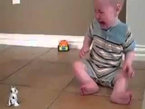 بالفيديو.. طفل مرعوب من لعبة صغيرة