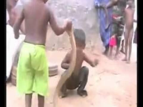 فى الهند العاب الأطفال من الأفاعي السامه