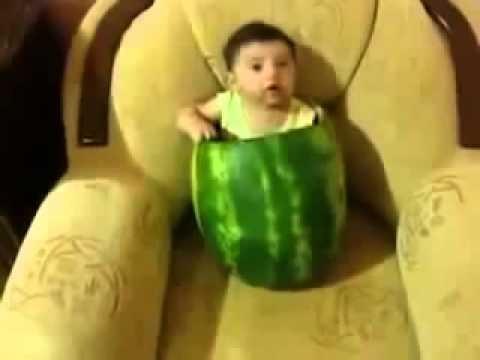 شاهد بالفيديو الطفل المصري وهو بياكل البطيخ