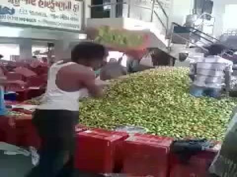 مهارات غريبه لعمال بسطاء